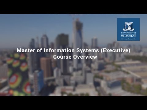 Master of Information Systems (Executive) Career Outcomes