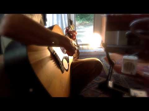 Organic Political Bonanza Song : Finger Style 12 String Open Tuning - Ylia Callan Guitar