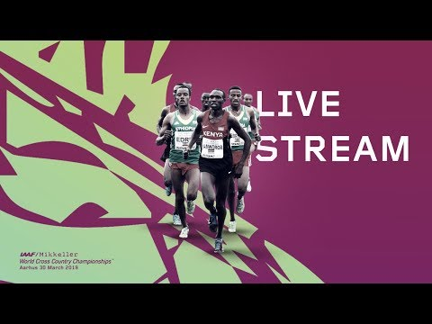 IAAF WORLD CROSS COUNTRY CHAMPIONSHIPS AARHUS 2019 Livestream