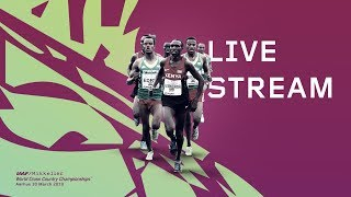 IAAF WORLD CROSS COUNTRY CHAMPIONSHIPS AARHUS 2019 Livestream