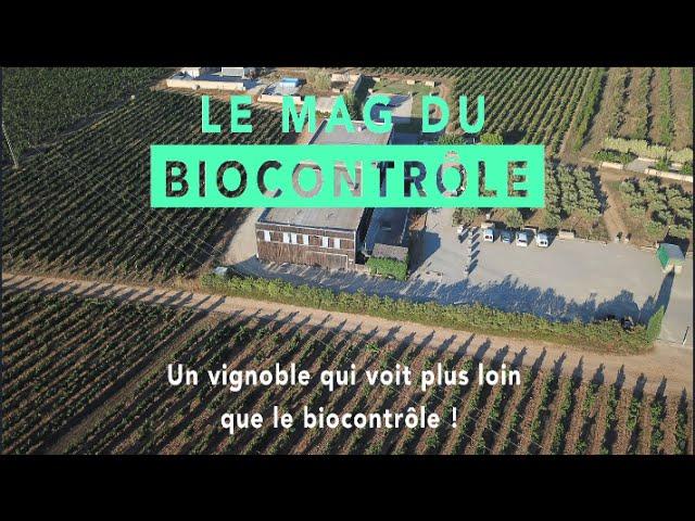 Un vignoble qui voit plus loin que le biocontrôle !