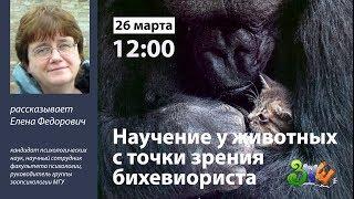 Лекция «Научение у животных с точки зрения бихевиориста»  | ЗПШ 2019