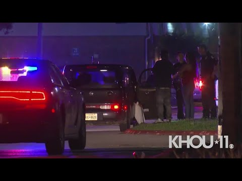 Baytown officer fatally shoots woman who claims to be pregnant