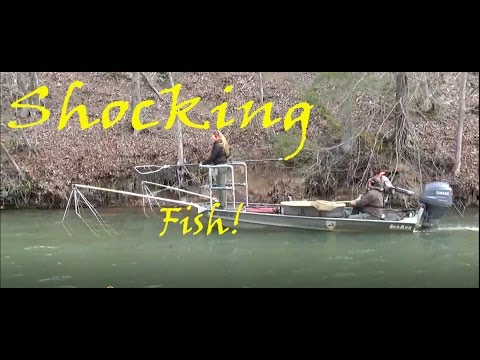 Virginia Game And Fish Shocking The HUNG!     (watch Till The End!)