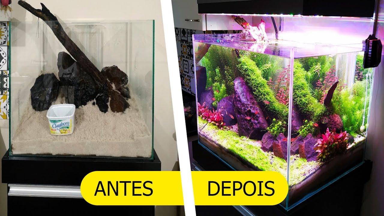Aquário Plantado | Trajetória desde o início até 90 dias. Sump, UV, luminária, fabricação caseira.
