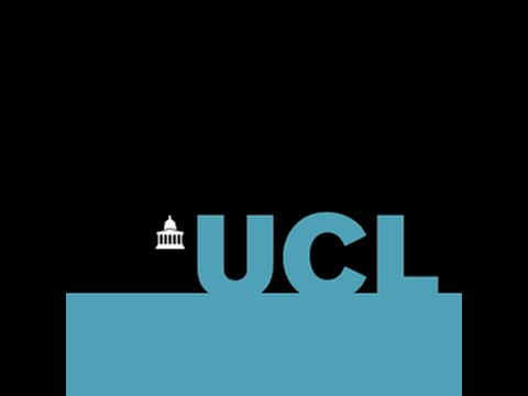 UCL RESEARCH SUMMER SCHOOL (Project)