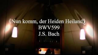 Messages from J.S. Bach ~パイプオルガンの響き~