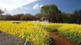 母の故郷への想いを、唄ってみました。 山崎ハコの望郷を聞いた母からの...