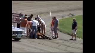 Out & About~Maine. The Windsor Fair with a Harness racing crash.