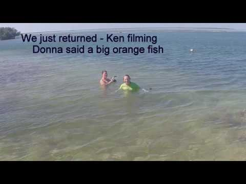 Snorkeling the HorseShoe at Scout Key, FL