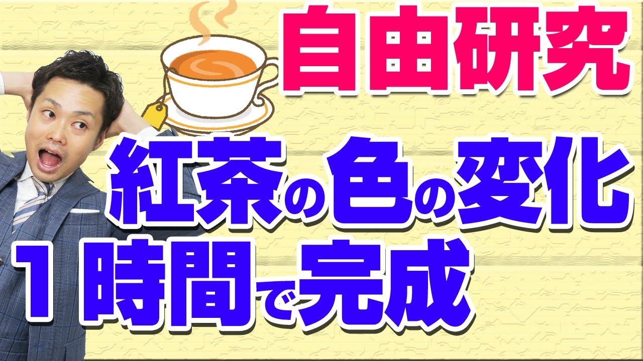 【紅茶の色を変える実験】小中学生の自由研究におすすめ【元理科教師道山ケイ】