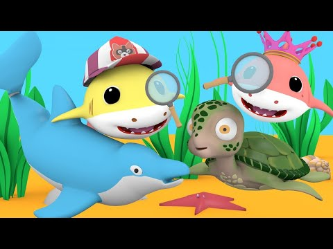 baby-shark-with---big-bigger-biggest-song---nursery-rhymes-songs-for-children