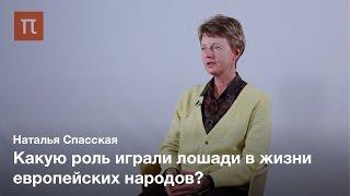 Культ коня у европейских народов — Наталья Спасская