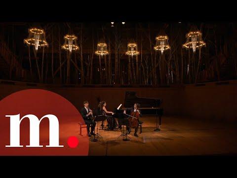 Gautier Capuçon, Beatrice Rana & Paul Meyer - Brahms: Trio in A Minor Op. 114