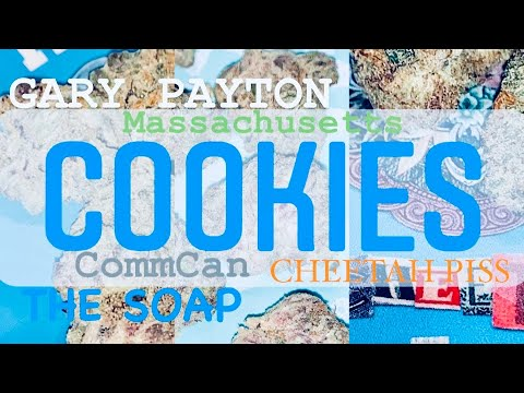 Official COOKIES Review Gary Payton Cheetah Piss and The Soap! Massachusetts New Drop From CommCan