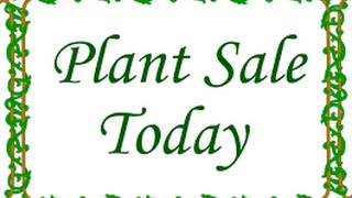 Seed Starting #3- Update & 2016 Plant Sale!