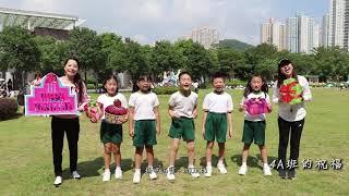 Publication Date: 2019-11-07 | Video Title: 海寶二十週年 trailer