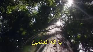 نصر الدين طوبار ♥️حسبي الله ونعم الوكيل♥️