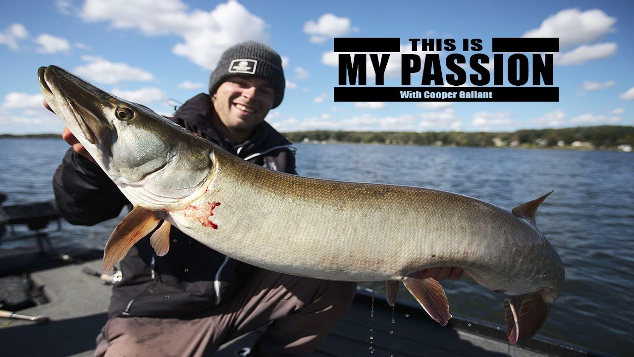Download My BIGGEST Kawartha Lake musky!