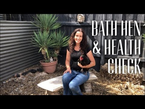 How to Bath a Chicken & do a Health Check