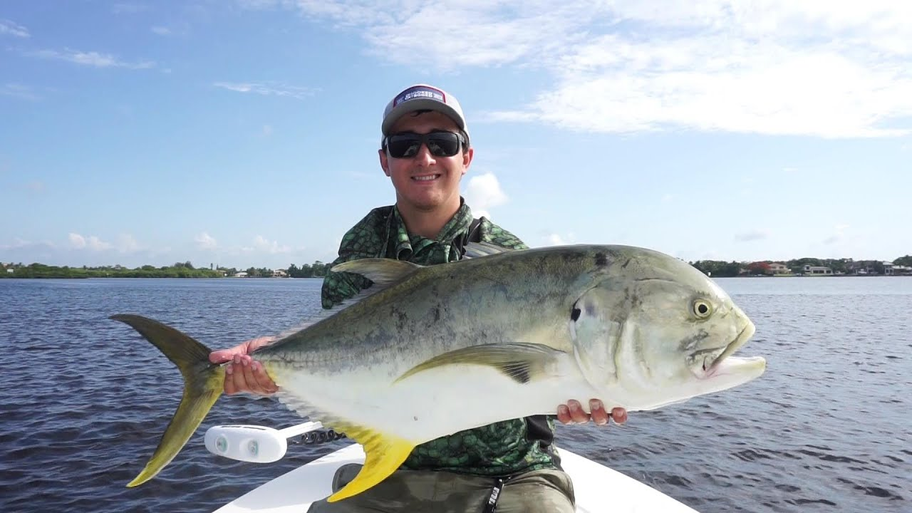 Fishing for big jack crevalle youtube for What is a jack fish