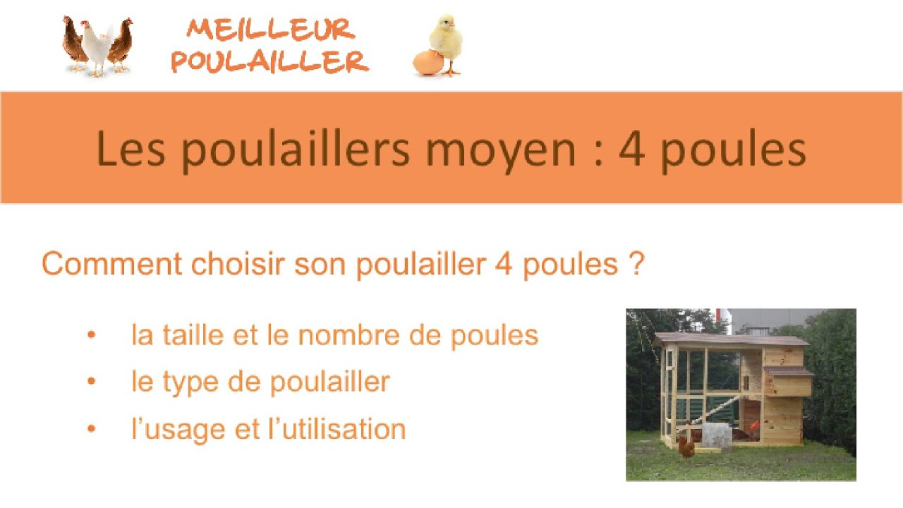 poulailler moyen 4 poules sur meilleur poulailler youtube. Black Bedroom Furniture Sets. Home Design Ideas