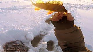 Рыбалка в -30. Я всё таки её нашёл! Супер клёв окуня! Сосиски И костерок!