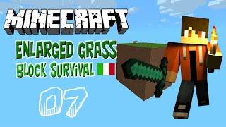 Minecraft Enlarged Grass Block Survival -EP.07- Farm di zombie/ferro pt 2