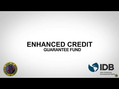 The Enhanced Credit Guarantee Fund