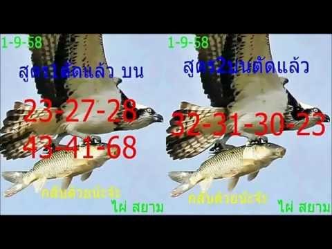 เลขเด็ด 1/9/58 ไผ่สยาม หวย งวดวันที่ 1 กันยายน 2558