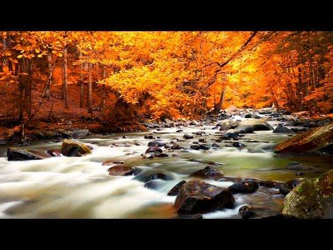 Meditationsmusik - Natur Entspannungsmusik