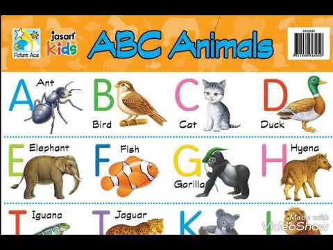 Worksheet Abcd Chart abcd alphabetical chart with photos video youtube video