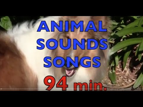 ANIMAL SOUNDS SONGS Compilations 94 min. Learn Animal Names & Their Sounds