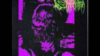 EMBRYONIC CRYPTOPATHIA - Harmonious tones of shattered teeth