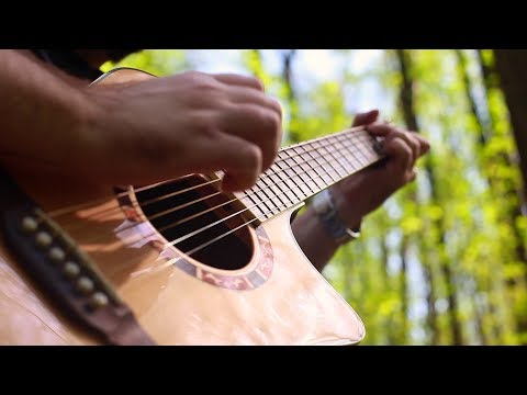 Pain - Shut Your Mouth - Fingerstyle Guitar - Dmitry LEVIN