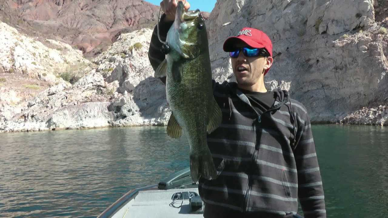 Lake mead bass fishing youtube for Fishing lake mead from shore