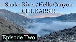 Snake River/Hells Canyon Chukar!!! pt.2