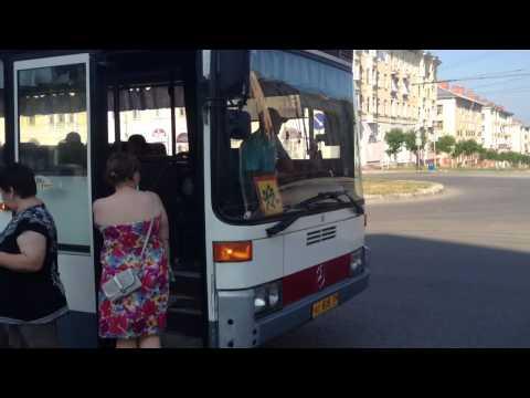 Санаторий Лесная сказка программа ревеззоро