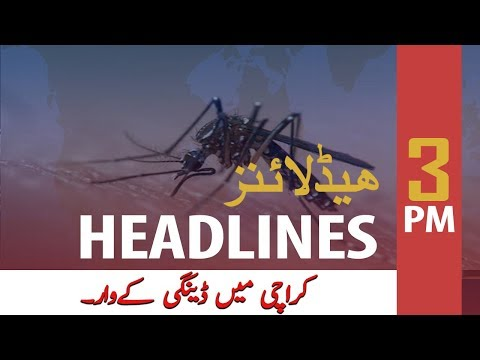 ARY News Headlines | Dengue fever claims another life in Karachi | 3 PM | 12 Nov 2019