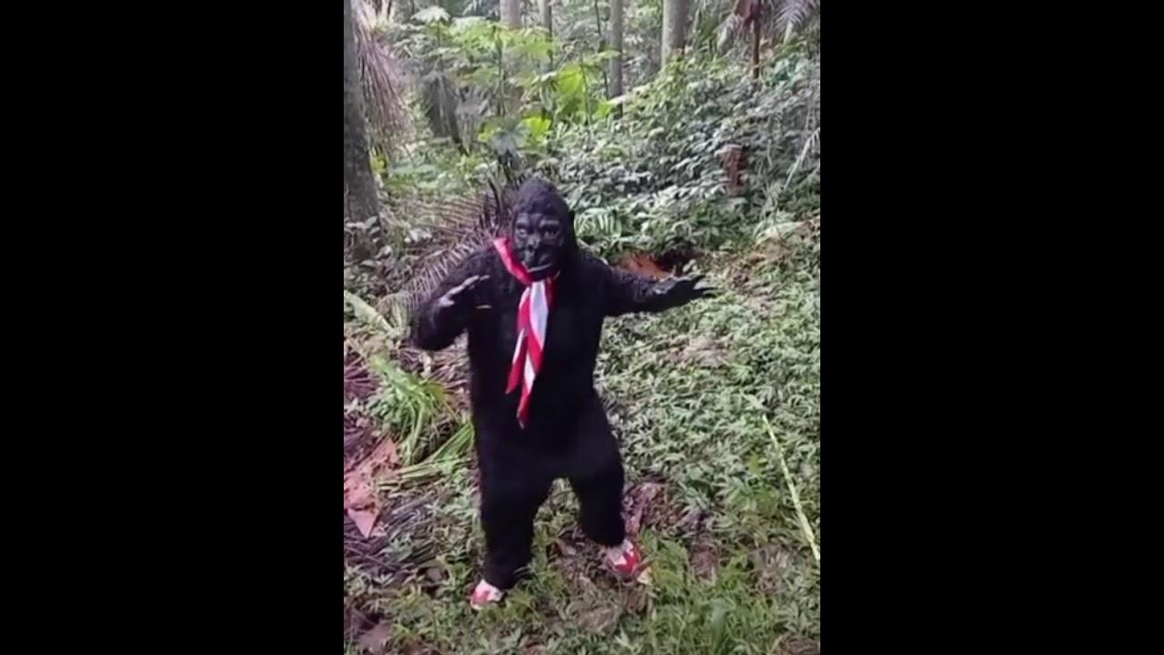 Download Arogan Terpesona yang Ber-Evolusi untuk Indonesia Selamanya..🙏💯🇮🇩  Ape Loe.. Loe Ape.. 😂😊😂  #