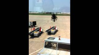 GIANT SPIDER ATTACKS NEW YORK !