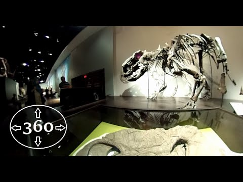 Travel Clips 360: The Royal Tyrrell Museum - Part 2