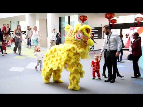 Nord Anglia Dubai Chinese New Year promotional Video