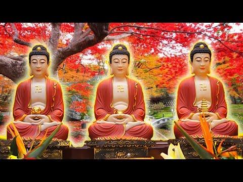 Nếu nghe K.i.n.h này 7 ngày liên tiếp Đức Phật hộ trì Gia Đình mãi mãi