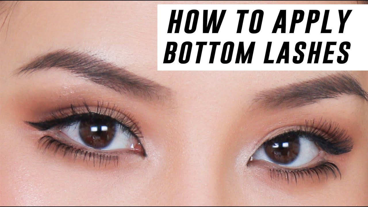 How To Apply Lower Lashes For Beginners Tina Yong Youtube