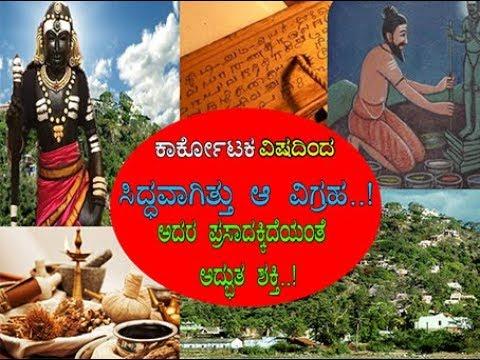 ಕಾರ್ಕೋಟಕ ವಿಷದಿಂದಾ ತಯಾರಾಗಿತ್ತು ಆ ವಿಗ್ರಹ..! The secret of palani temple/ navapashana vigraham..!