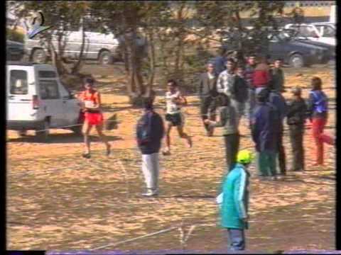 Atletismo :: Sporting Campeão Nacional de Corta Mato em 1993
