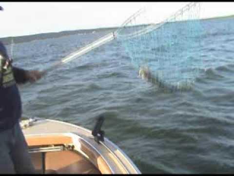 Good ole boys fishing on hubbard lake youtube for Hubbard lake mi fishing