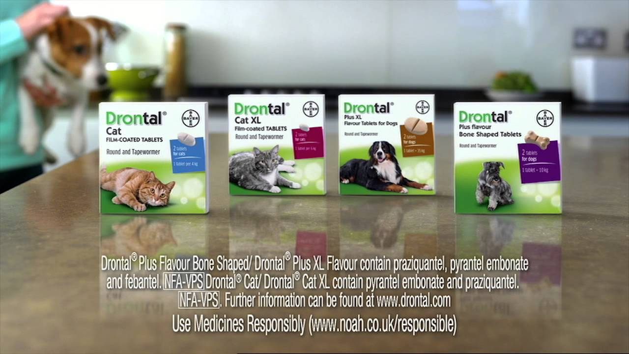 Drontal Drontal Cat Wormer Single Tablets