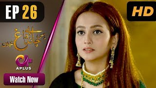 Pakistani Drama | Is Chand Pe Dagh Nahin - Episode 26 | Aplus ᴴᴰ Dramas | Zarnish Khan